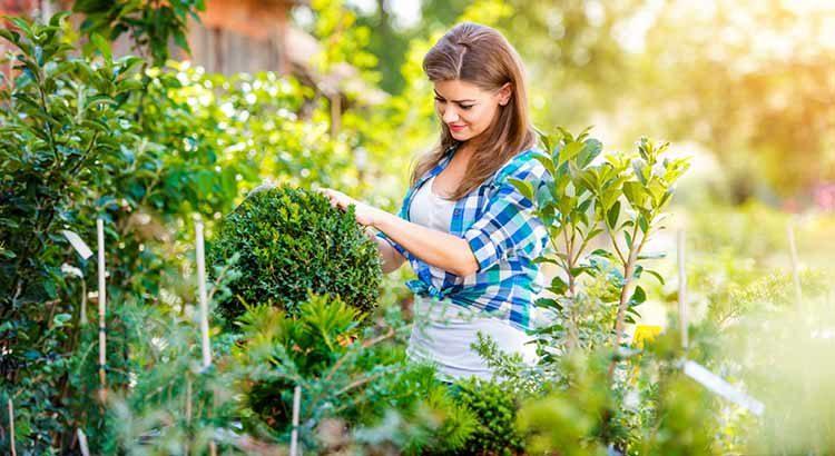 Как садоводство улучшает психическое равновесие?