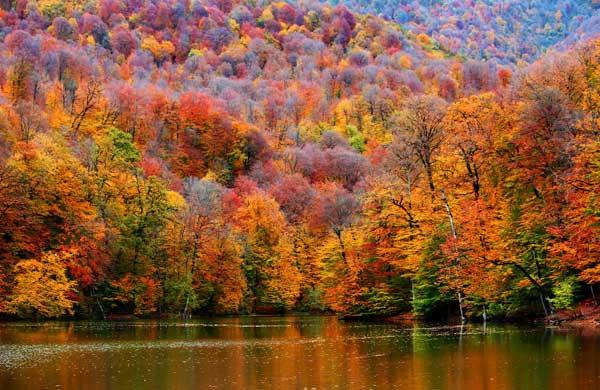 Осень самое прекрасное время года
