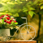 9 советов как сохранить свежесть подаренных цветов