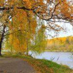 30 доказательств, что осень самое прекрасное время года (фото)