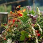 Очистка печени — природные средства
